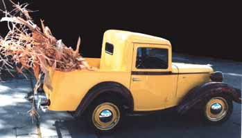 Ray Ostrander 1940 Bantam Pickup